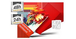 Bestelloptionen Visitenkarten Hoch 4 4 Farbig 50 X 90 Mm